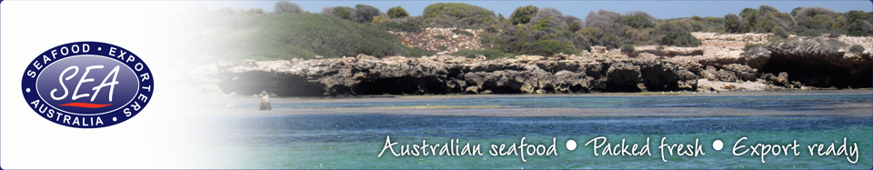 Australian Seafood, Packed Fresh, Export Ready